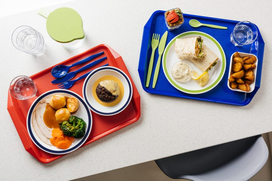 ABS Tray with Handle for School Lunches