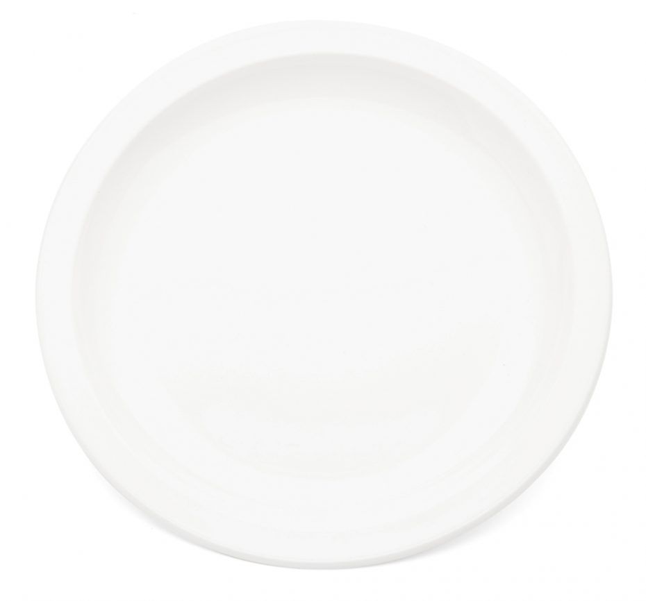 Small Antibacterial Plate