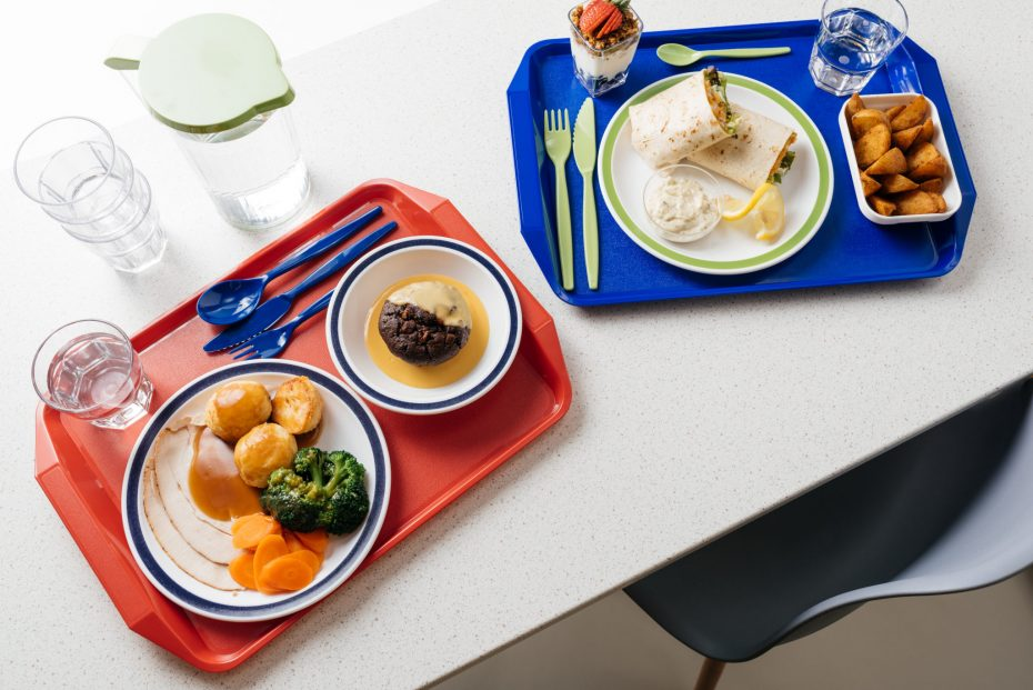 School Meal Trays with handle and dinner sets