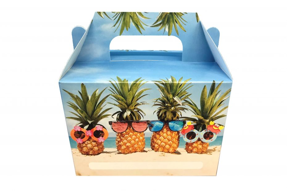 Pineapple Kids Lunch Box